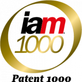 IAM Patent 1000 Logo